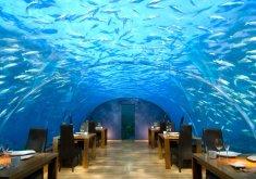 Conrad Maldives Rangali Island***** de Luxe