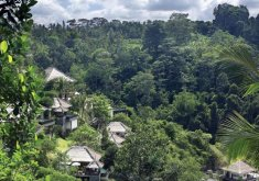 Ubud Hanging Gardens***** Ubud