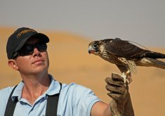 Private Falconry Experience